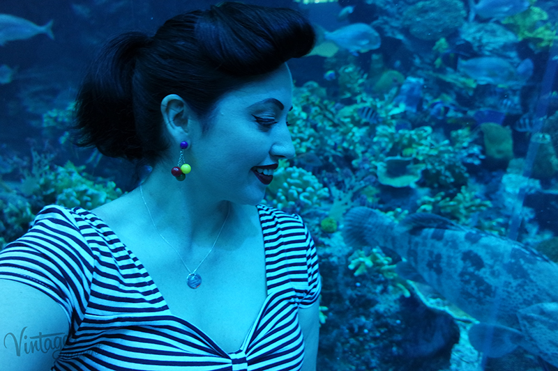 Dubai underwater Aquarium and zoo