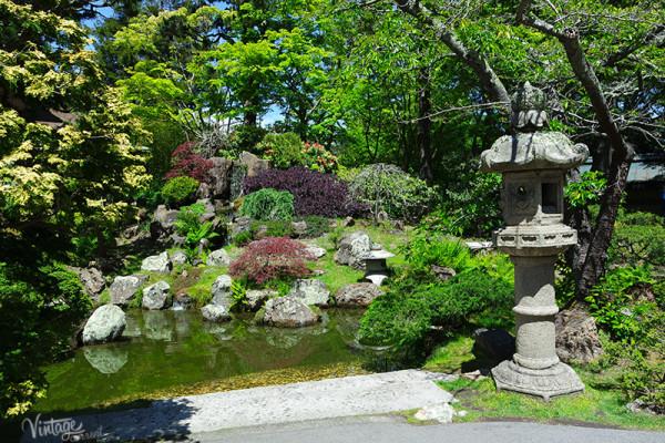 Japanese tea Gardens San Francisco